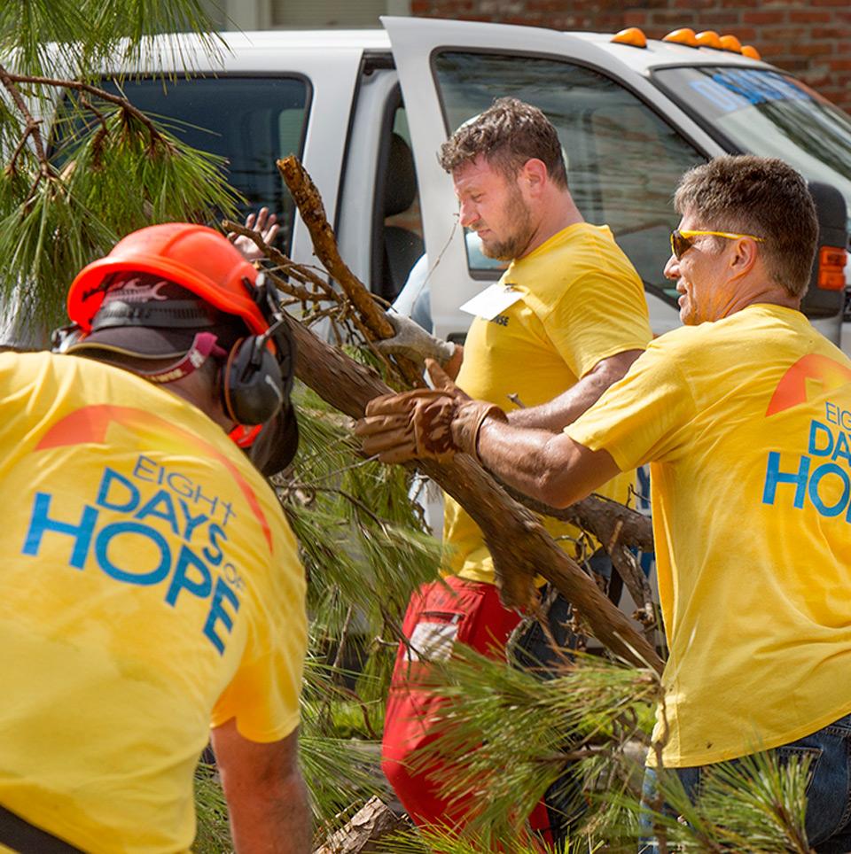Three volunteers clearing brush