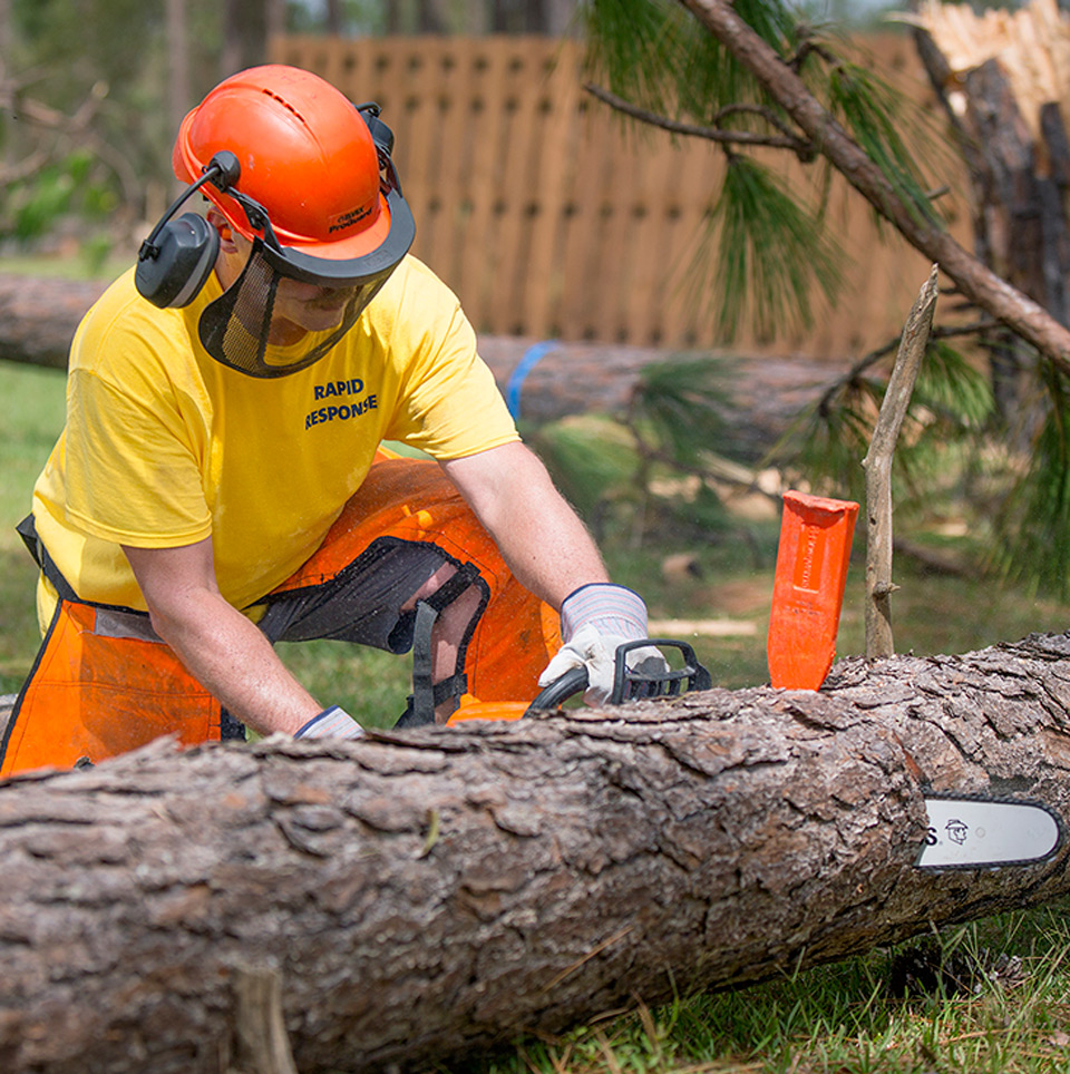 volunteer with chain saw